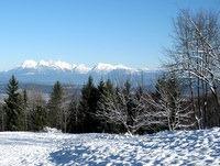 Pogled na Kamniško Savinjske Alpe