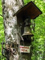 Zvončka na vrhu Murovice