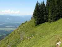 Prečenje strmega travnika