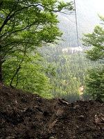 Tovorna žičnica za spuščanje lesa v dolino