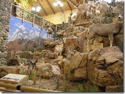 Cabelas Sporting Store