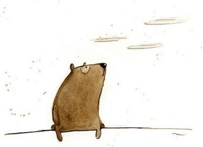 dohanyos-medve
