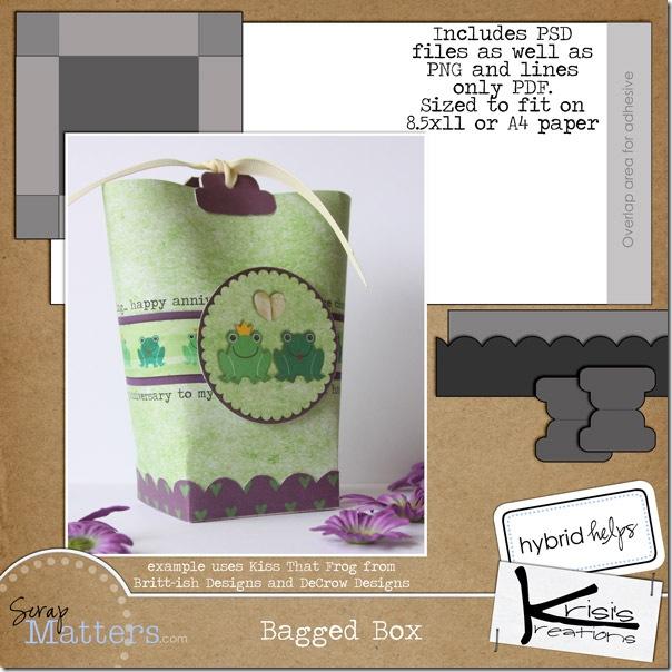 BaggedBox021910