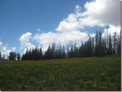 End of Utah 068