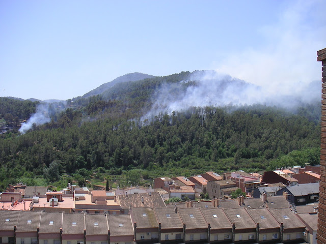 Panor&agrave;mica que mostra clarament l'abast de l'incendi del 19 de juny de 2010. L'incendi s'inicia a la Font del Marge (esquerra) i es propaga en direcci&oacute; Can Via (dreta). <b>Autor: Konfrare Albert</b>