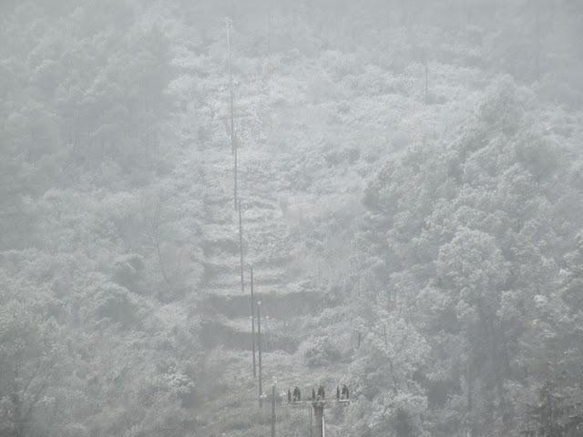 Nevada el 8 de mar&ccedil; de 2010. Muntanya de Can Llopart nevada. <b>Autor: Albert A.</b>