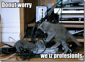 donut-worry-we-iz-profesion