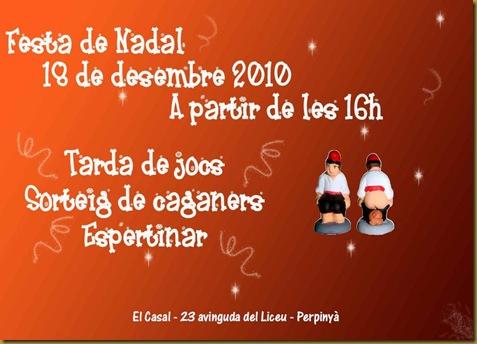 Festa de Nadal a Perpinyà 2010