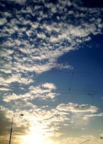 M.photos3955.jpg