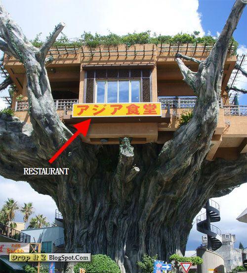 the-naha-harbor-diner-in-okinawa tree house restourent.jpg