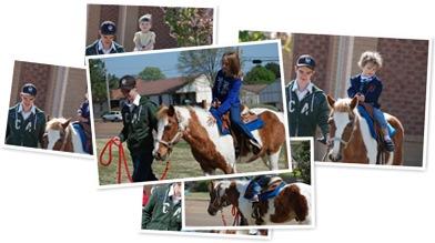 View Pony Rides