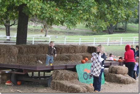 Pumpkin Patch 09 089