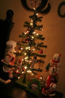 pre-Christmas 2010 040