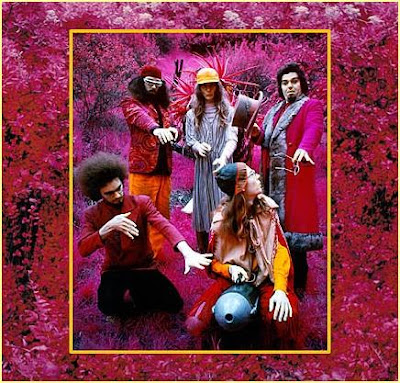 Captain Beefheart & the Magic Band ~ 1999 ~ Grow Fins