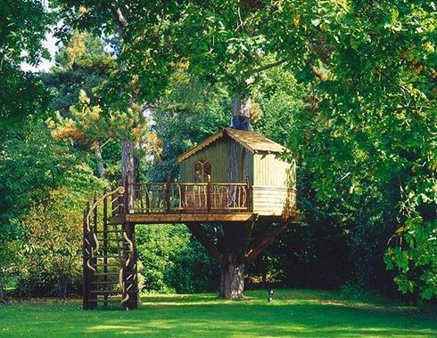 Amazing Tree Houses Around The World 06