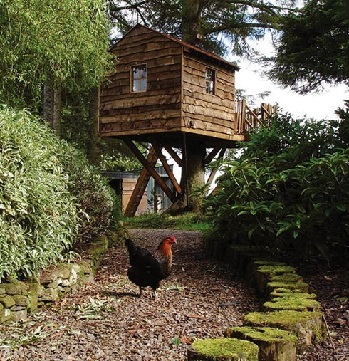 Amazing Tree Houses Around The World 07