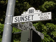 A Night Out on Sunset Boulevard