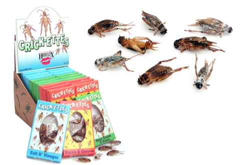 Crickets Snack Packs