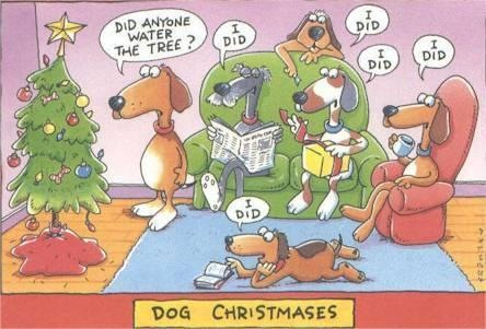 funny-dogs-Christmas-tree-picture-comic-strip