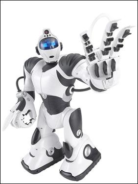 robo-sapiens-lg