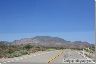 Mojave Desert-5