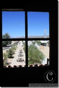 Mojave Desert-12