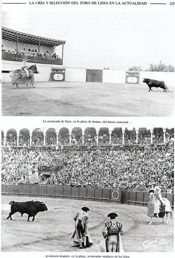El Cossío Tomo XI (1994) pag 125 001