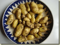 new potatoes_1_1