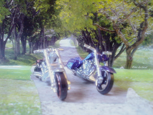 Hotwheels 03/12 Bad Bagger T