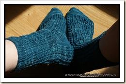 Castanea Socks