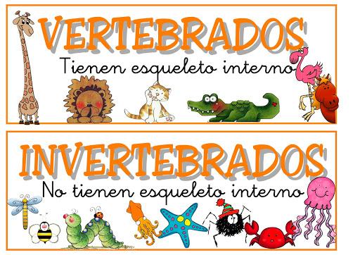 Animales Vertebrados E Invertebrados Para Colorear