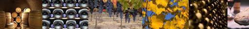 Jurnal despre vin şi bucate
