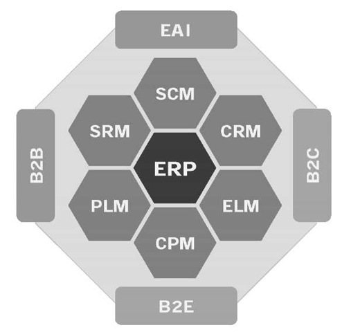 ERP with its peers and companions