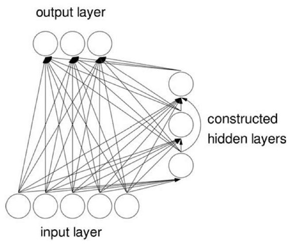 A cascade-correlation network.