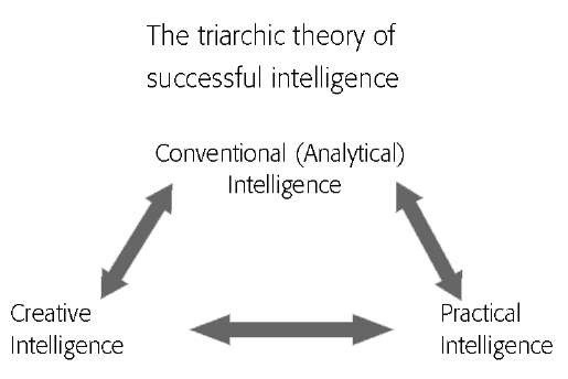 The components of the triarchic theory of successful intelligence.