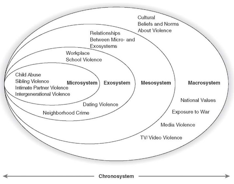 Ecological models of violence utility of the ecological model ccuart Gallery