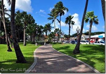 Aruba_6769