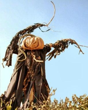 Scarecrow Da Black Cat Bone
