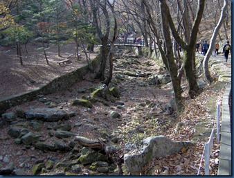 Gyeoryongsan Nov 13 (25)