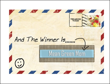 The Winner Is copy