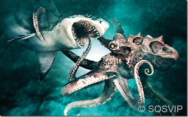 Octopus-vs.-Shark