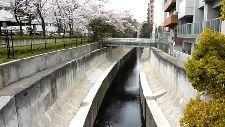 天現寺橋から見た渋谷川上流方面