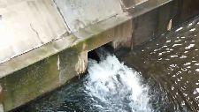 並木橋 鉢山分水渋谷川合流口