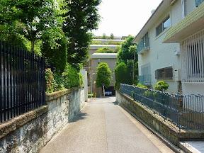 宮村公園坂上からがま池方面