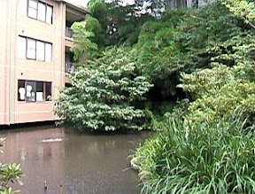 がま池平成11(1999)年7月