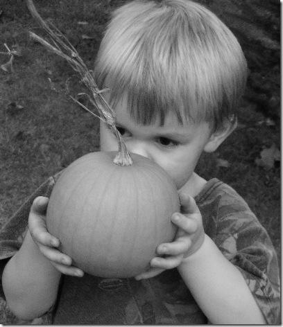 Black and White Autumn Peek A Boo 2