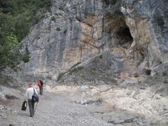 cova de Coll Roig