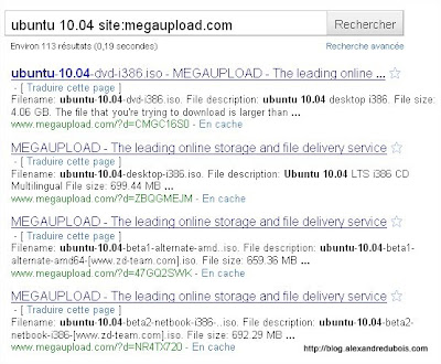 MEGAUPLOAD_google_search.jpg