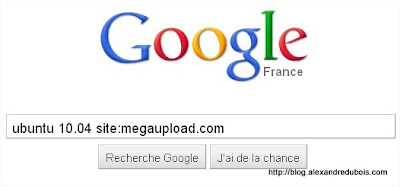 MEGAUPLOAD_google_search_init.jpg