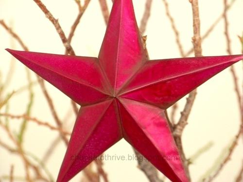 star.51